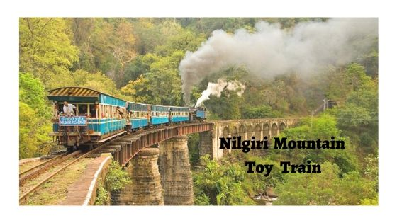 An Exciting Toy Train Journey To Ooty From Mettupalayam.
