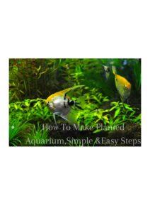 HOW TO SET UP PLANTED AQUARIUM, 7 EASY STEPS..
